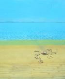 Sandflats 4x6 Ft